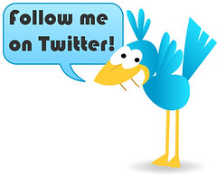 Follow Me on Twitter Bird