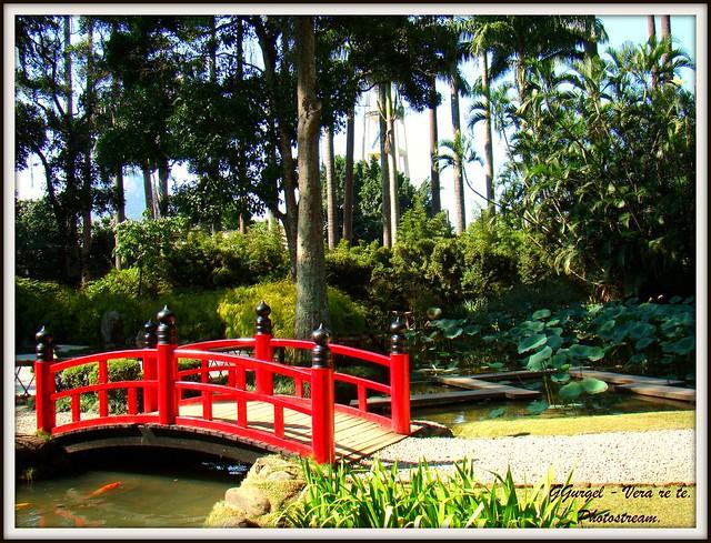 casamento no jardim botanico rio de janeiro : casamento no jardim botanico rio de janeiro:JARDIM JAPONÊS no Jardim Botânico do Rio de Janeiro / Brasil