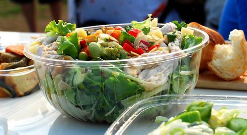 salad / Gundam picnic