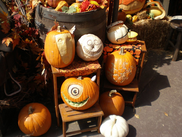 big thunder ranch pumpkins