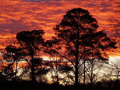 atlanta silhouette clouds sunrise georgia day cloudy decatur februarysunrise