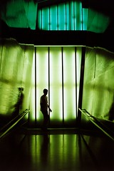 UK - London - Millennium Dome - Green Silhouettes 01