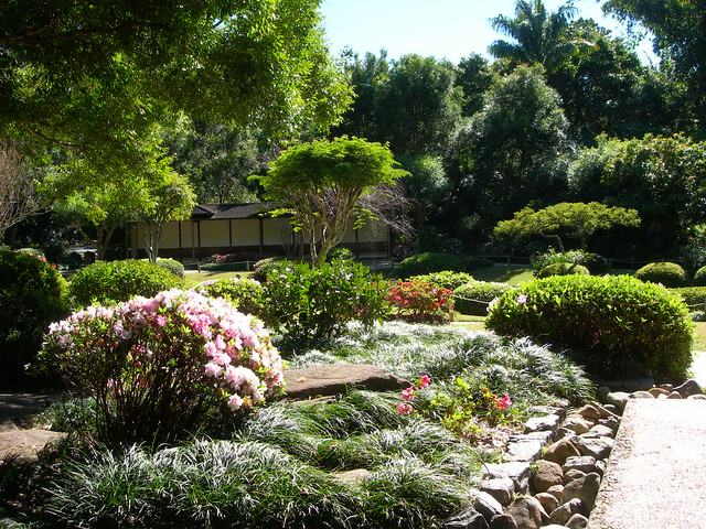 Japanese Garden Botanical Garden Brisbane Explore