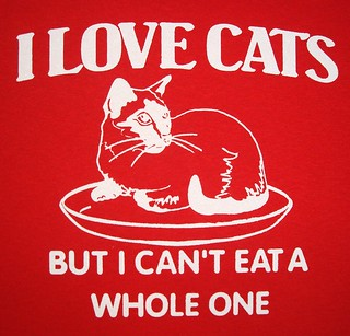 i love cats but...