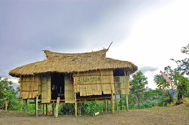 Ata manobo tribal house flickr photo sharing for Tribal house