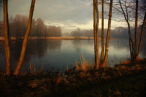 winter light sunlight pond lithuania palanga arunas saariysqualitypictures coth5 sailsevenseas