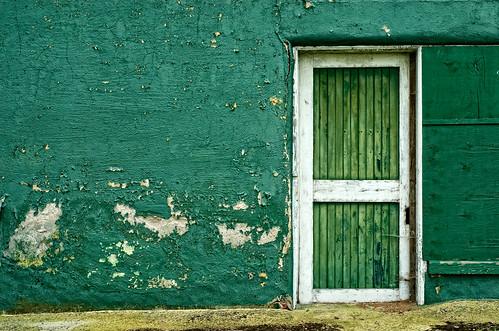 door green texture nikon delaware d200 wilmington 50mmf18d bellevuestatepark epiceditsselection