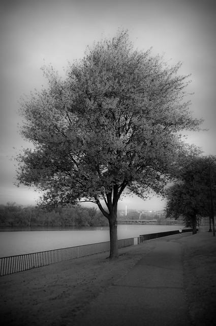 Washington - Potomac River