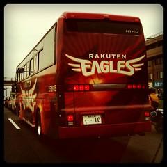 楽天イーグルスのバス見つけた