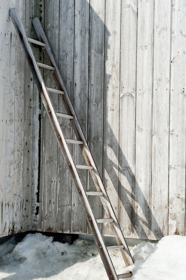 Shadow of a Ladder
