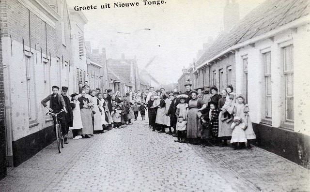 picture from NIEUWE - TONGE  , a small place on the former island of Goeree-Overflakkee in The Netherlands ,  about a century ago