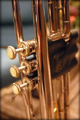 string instrument(0.0), tuba(0.0), saxophone(0.0), guitar(0.0), euphonium(0.0), string instrument(0.0), trumpet(1.0), trombone(1.0), musical instrument(1.0), close-up(1.0), iron(1.0), brass instrument(1.0),