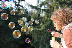 Bubbles - Botanic Garden Cluj-Napoca
