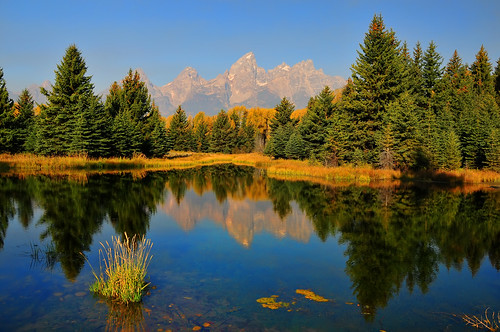 A MIrror Reflection at Schwabacher