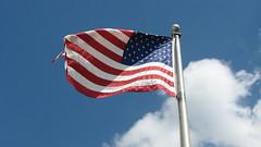Flag waving #6