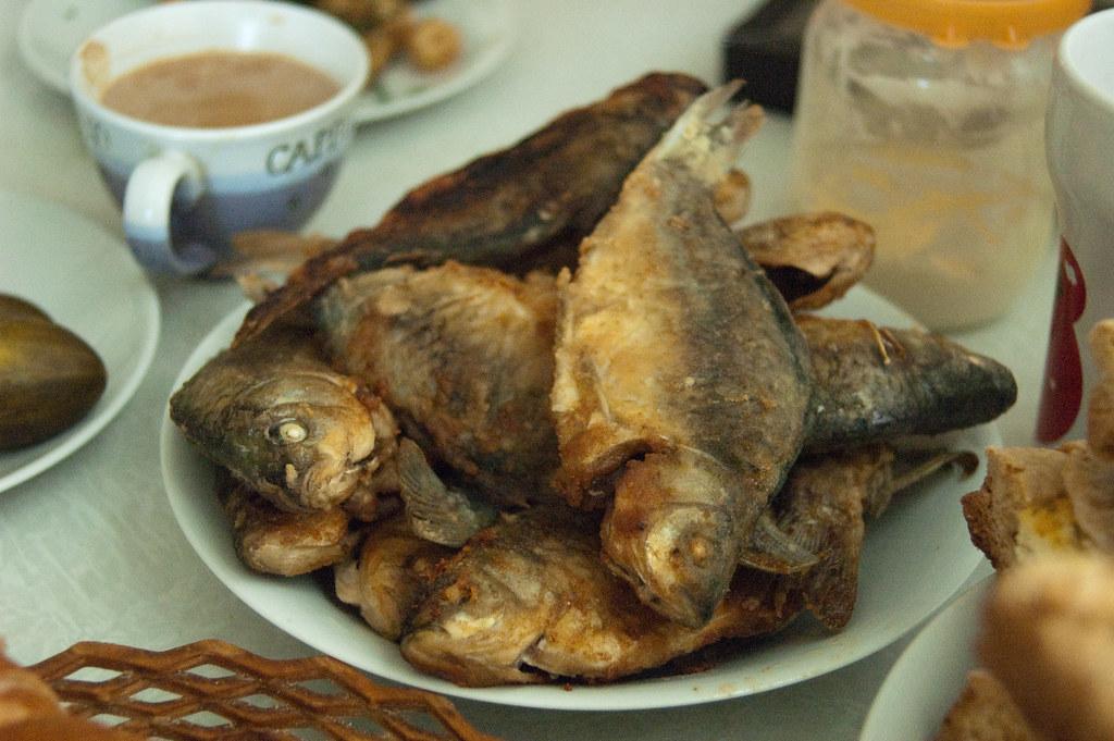 Fish flickr photo sharing for Keller fish farms