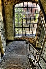 Das Fenster zum Hof / rear window