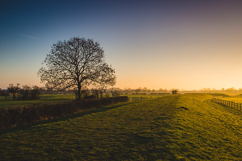 morning light sunset sun tree sunrise canon landscape golden countryside spring colours derbyshire fields sawley 5dmkiii