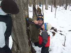 2009 syrup camp 1