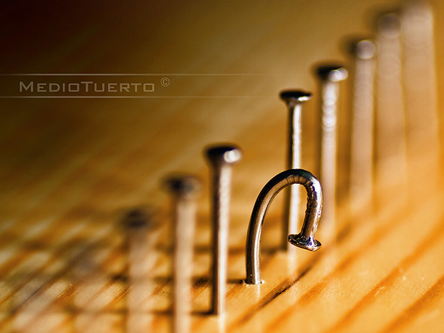 Flickriver Photoset 39 Lester A Dine 105mm F 2 8 Macro 39 By