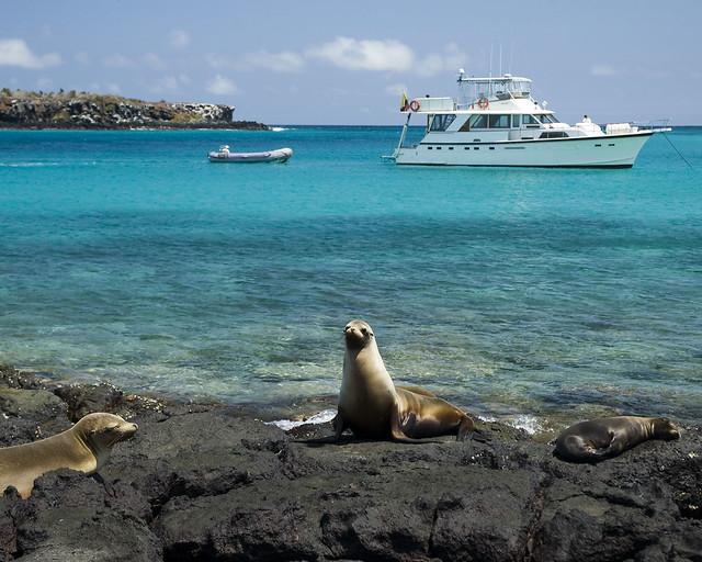 Isla Plaza / Galápagos
