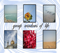 windows of life