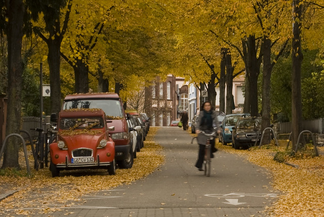Herbst in Freiburg by Benediktv on flickr