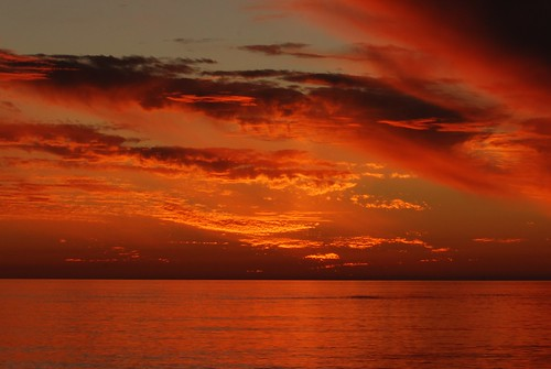 sunset gulfofmexico birds florida sarasota lidobeach michaelskelton michaeldskelton michaeldskeltonphotography