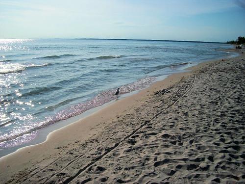 ontario canada geotagged sandbanksprovincialpark princeedwardcounty geo:lat=4390364900 geo:lon=7728395000