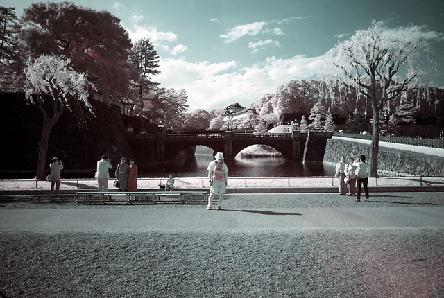 A digital Infrared photography