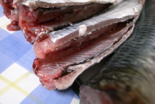 Fresh Sardines por naotakem, en Flickr