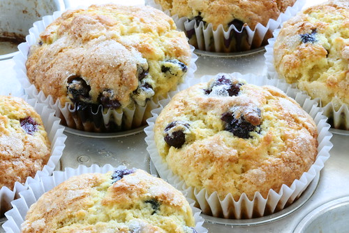 Blueberry muffins for breakfast