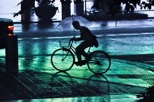 Roppongi Rain