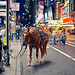 New York City – The Police Horse by Philipp Klinger Photography