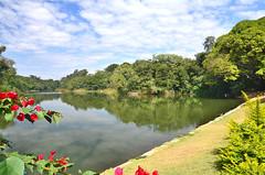 09/06/2011 - DOM - Diário Oficial do Município