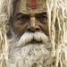 Small photo of Brahman