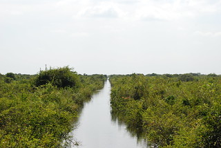 'Canal' through the flooded forest from Siem Reap to Battambang, Cambodia
