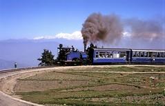 * Indien  # 10  Darjeeling  und  Nilgiri