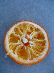 plant(0.0), blood orange(0.0), calabaza(0.0), produce(0.0), clementine(1.0), grapefruit(1.0), citrus(1.0), orange(1.0), fruit(1.0), food(1.0), tangelo(1.0), bitter orange(1.0), tangerine(1.0), mandarin orange(1.0),