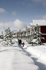 Carriage Ridge Resort in Winter in Canada