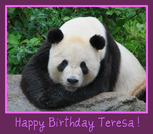 Happy Birthday Teresa!