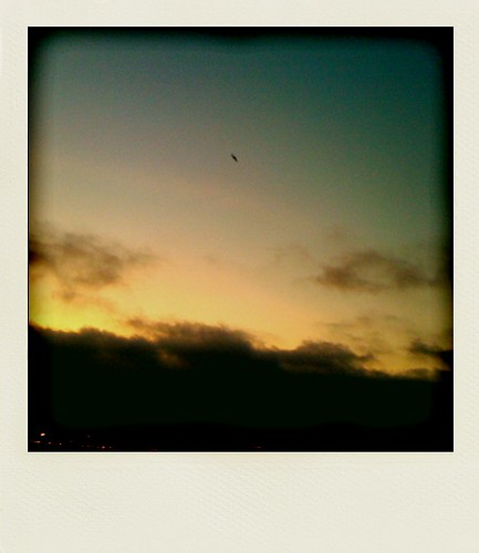 Sky polarized