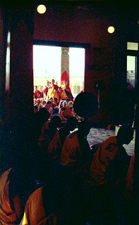 Overflow of monks and Seattle Washington USA students on the steps, with Tibetan Buddhist monks in the foreground, Sakya College, India