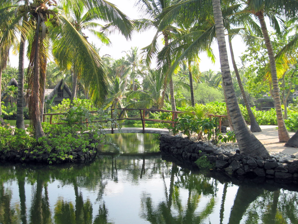 All Inclusive Hawaiian Vacation
