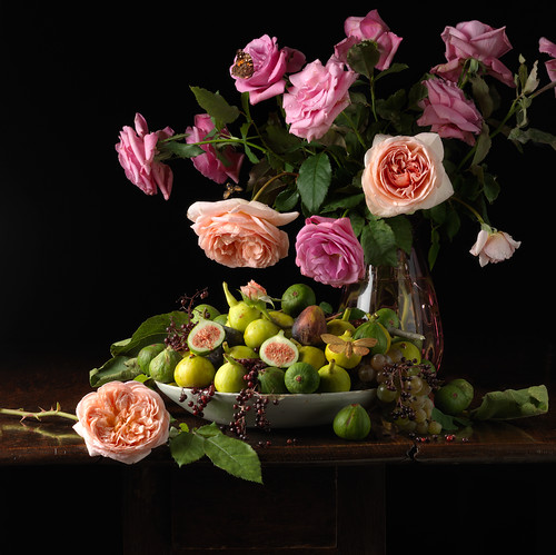 Paulette Tavormina, Roses and Figs (from the series Natura Morta), 2013