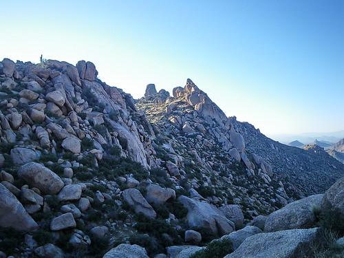 arizona southwest desert hiking hike scottsdale saguaro rockclimbing mcdowellmountains pinnaclepeak tomsthumb mcdowellsonoranpreserve azhike alhikesaz intphoenix