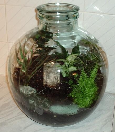 бутылочный садик: