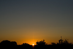 Coucher de soleil / IMG_3520