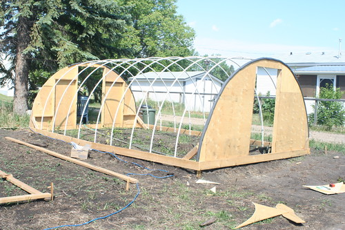 An inexpensive hail proof pvc pipe greenhouse alberta home gardening - Construire une serre tunnel ...