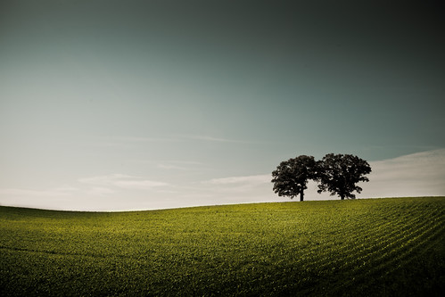 blue sky tree green field june wisconsin rural landscape photography photo midwest image farm horizon country hill picture land hillside 2009 canonef1740mmf4lusm canoneos5d superaplus aplusphoto lorenzemlicka